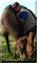 Beate Behnke, Pferdeosteopathin und Pferdekinesiologin, Fütterungsberatung, Matrix-Ryhtmus Therapeutin